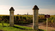 WS Two columns flanking entrance to vineyard / Pomerol, Aquitaine, France