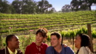 WS Two couples drinking wine and toasting on picnic blanket in vineyard / Paso Robles, California, USA