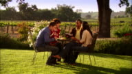 WS Two couples drinking wine, toasting, and enjoying picnic around table in vineyard / Paso Robles, California, USA