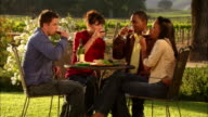 MS PAN Two couples drinking wine, toasting, and enjoying picnic around table in vineyard / Paso Robles, California, USA
