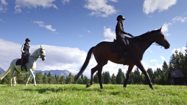 DS Two female friends riding their horses across mountain meadow