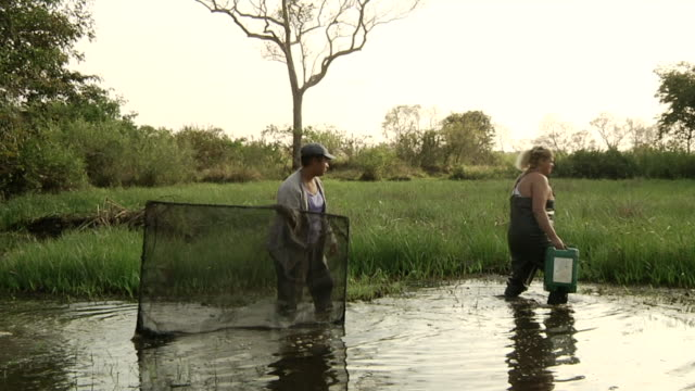 MS Two fishers in lake for fishing / Mato Grosso do Sul, Brazil
