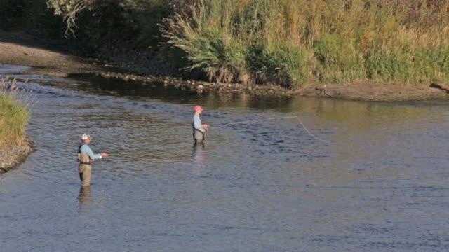 Two fly fisherpeople wade and fish on the Snake River in Idaho