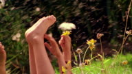 MS PAN two girls playing with wildflowers in field + waving bare feet in air / gnats flying in air