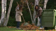 WS, Two girls (10-11) raking leaves in garden, Los Angeles, California, USA