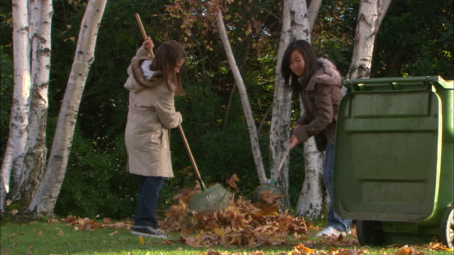 WS, Two girls (10-11) raking leaves in garden, Los Angeles, California, USA