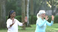 Two mature women practicing tai chi in the park