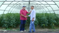 Two men in handshake in greenhouse