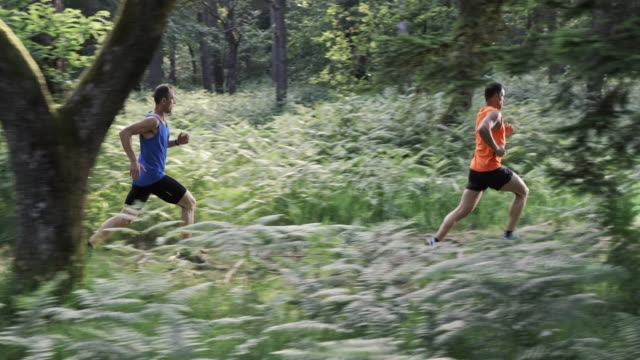 SLO MO DS Two men running on a forest trail