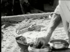Two men sitting outside on mat wearing turbans eating with hands woman brings over small bowls of food CU man taking food with fingers placing it on...