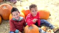 Two multi-ethnic boys in pumpkin patch