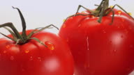 CU, Two red tomatoes with water droplets