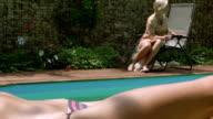 Zwei ruhen Frauen und Englisch Bulldogge in der Nähe des Swimmingpools