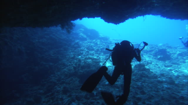 Two scuba divers swim near the entrance to an underground cave.