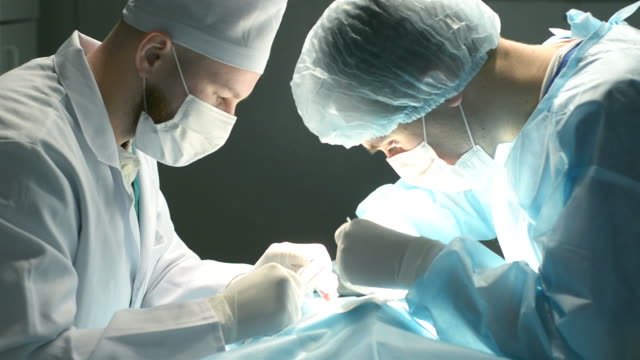 two shot of veterinarian surgeons in operating room