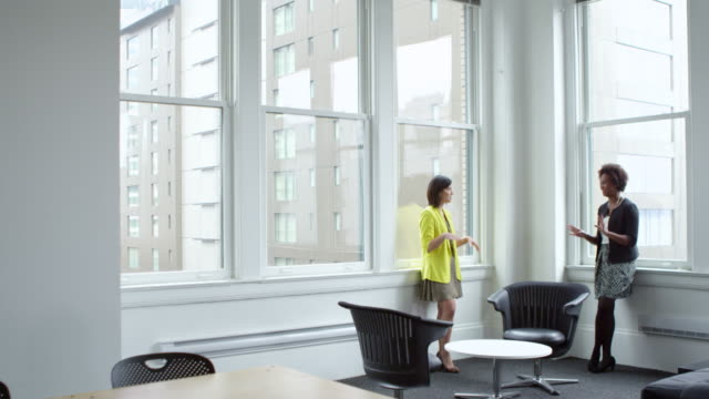 MS Two smiling businesswomen standing in discussion near windows in office