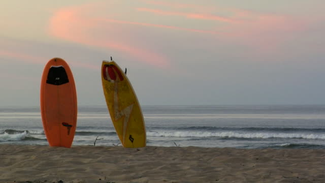 MS, Two surf boards on beach, North Truro, Massachusetts, USA