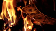 Two videos of burning money in real slow motion