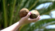 Two videos of hand holding coconuts in real slow motion