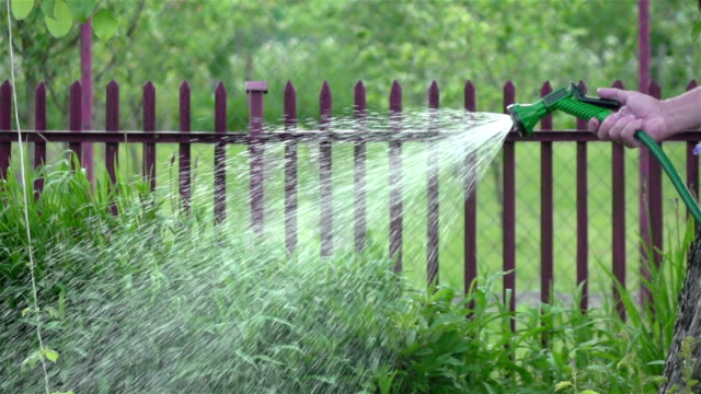 Two videos of senior man watering vegetable garden-real slow motion