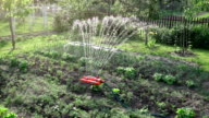 Two videos of sprinkler in real slow motion