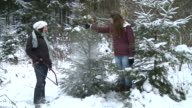 MS Two women taking christmas tree with them after cutting / Saarburg, Rhineland-Palatinate, Germany