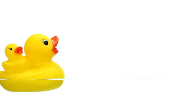 Two Yellow Rubber Duck Floating on Water