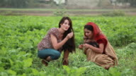 Two young women eating spinach, Haryana, India