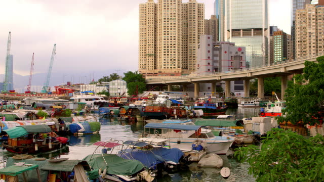 Typhoon Shelter, Hong Kong