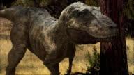 CGI, CU, Tyrannosaurus rex standing in forest