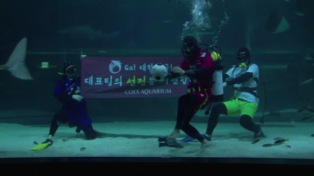 Un grupo de buzos surcoreanos mostraron el lunes que todo es posible en nombre de la Copa de Mundo al disputar un particular partido subacuatico...