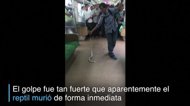 Un hombre se convirtio rapidamente en heroe en las redes sociales tras matar con sus manos una cobra hallada en un tren abarrotado de pasajeros
