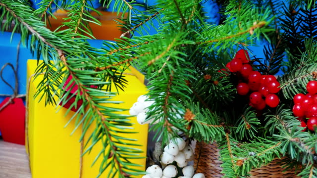 Under Christmas tree