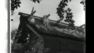 Under the leadership of Imperial Army General Tadamichi Kuribayashi and Naval air force commander Major General Rinosuke Ichimaru Japanese defense...