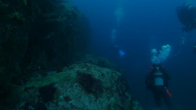Undersea pinnacle, reef, Japan