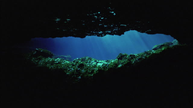 POV, MS, Underwater cave and sunlight shimmering through water, USA