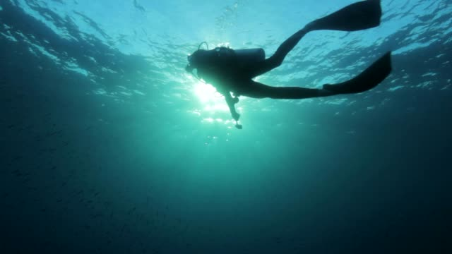 Underwater diver silhouette with the sun behind