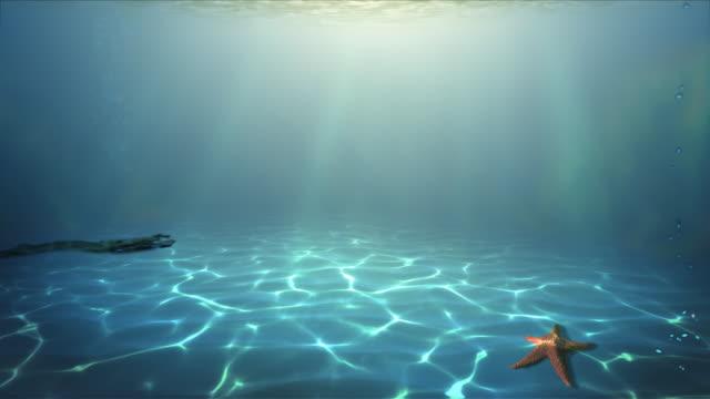 Underwater paradise Loop