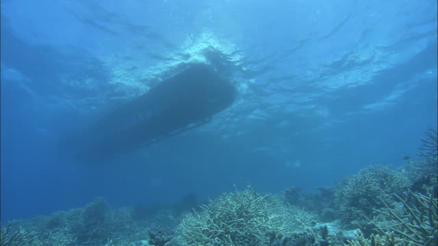 MS LA PAN Underwater view of bottom of semi sub moving through water, Great Barrier Reef, Queensland, Australia