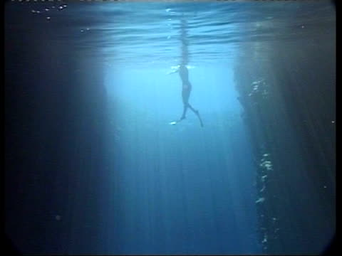 MS underwater view of free diver swimming down towards camera, Israel