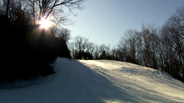 WS Unidentifiable people skiing snowboarding down snow hill silhouette of trees BG BRIGHT GLARE of sun behind trees BG Winter sports slopes skiers...