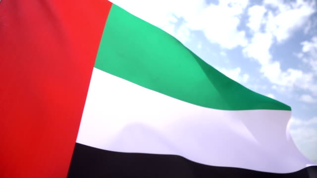 United Arab Emirates Flag High Detail
