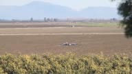 United States drone crashed in a field in Dogankent neighborhood of Yuregir district after departing from Incirlik Airbase in Adana southern Turkey...