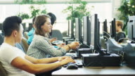 University Students Studying in a Computer Lab