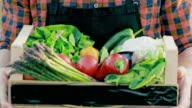 SLO MO unkenntlich Bauer tragen eine Kiste voll mit Gemüse