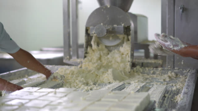 Unrecognizable men working at a dairy factory making cheese