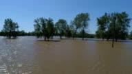 Omhoog en weg enorme overstromingen grote perceel grond volledig overstroomd door de Orkaan Harvey bomen en bos overstroomd luchtfoto drone weergave