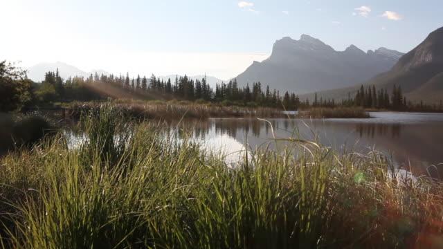 PAN upwards of calm mountain lake through grasses