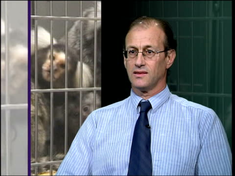 Use of monkeys in medical research is questioned London INT Andre Menache interview SOT there is no scientific justification for experimenting on...