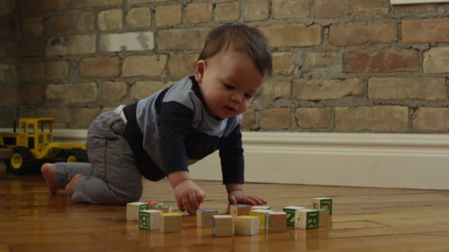 USA, Utah, Orem, Boy (6-11 months) playing with blocks